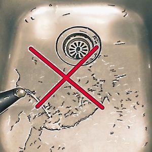 排水管に熱湯を流してはダメ