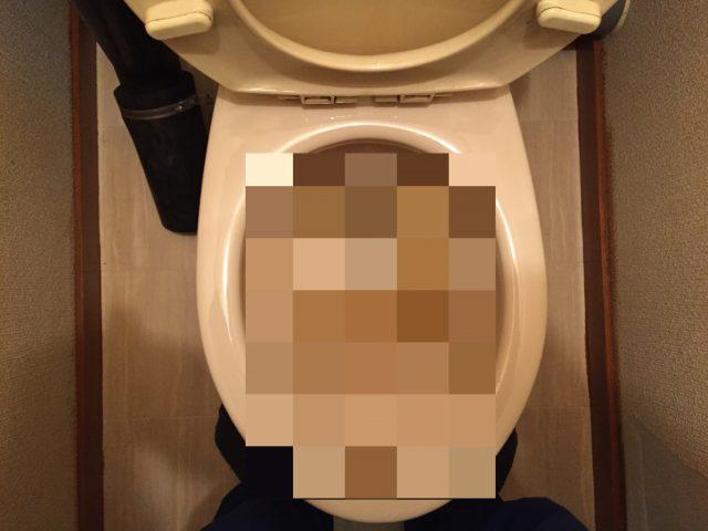 トイレの詰まりを直す