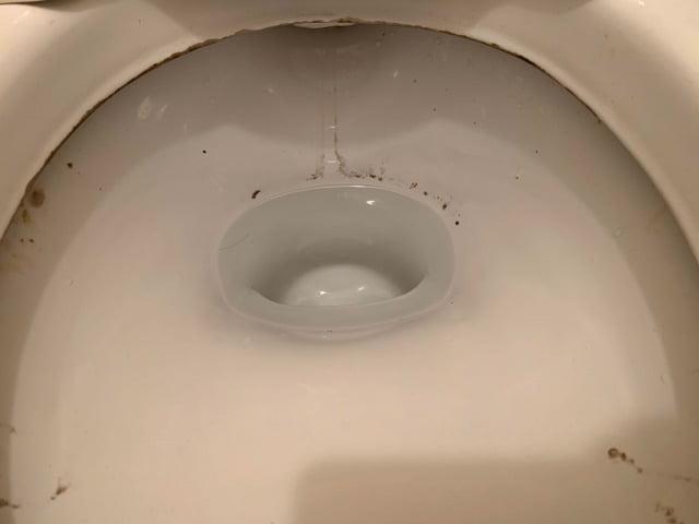 サトミツ棒でトイレ掃除